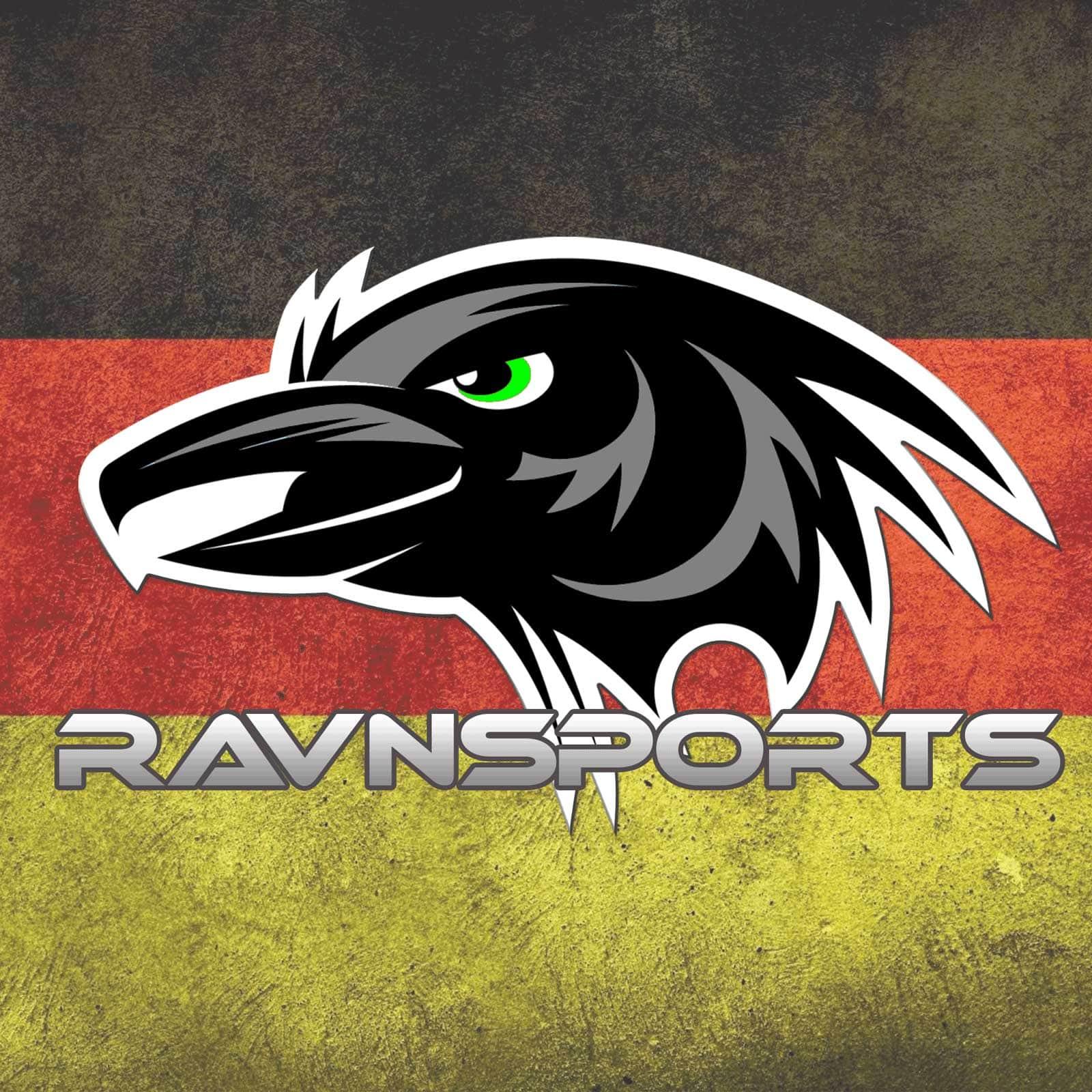 ravensports-gaming-csgo-logo-liebespixel-webdesign-print-kirchheim-german-flag